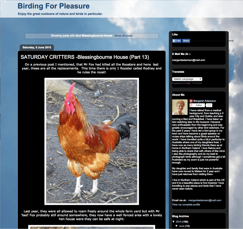 screenshot of birding for pleasure